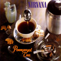 nirvana pennyroyal tea single artwork