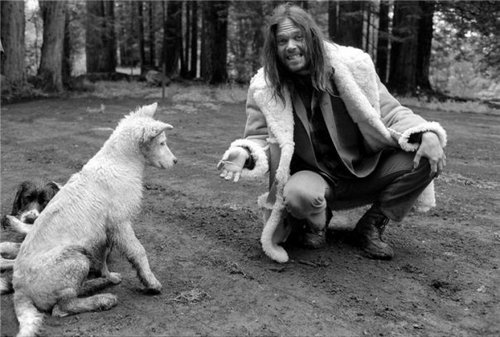 Neil young white cute dog