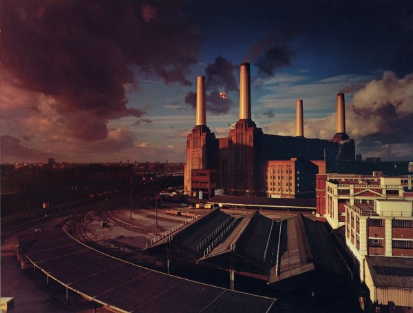 Pink Floyd Animals Cover Desktop Wallpaper